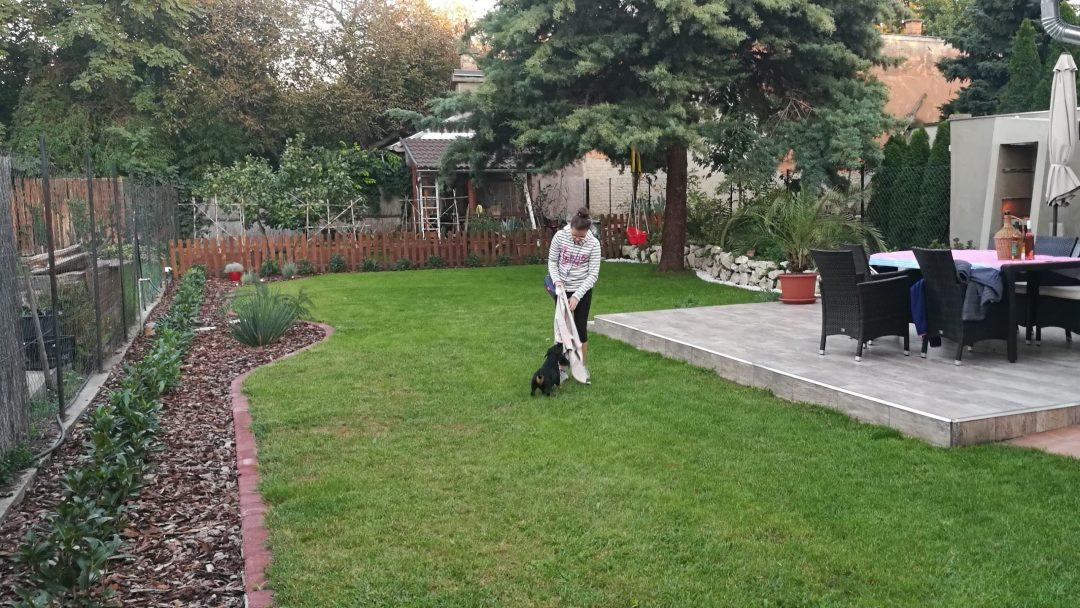 Felújított kert