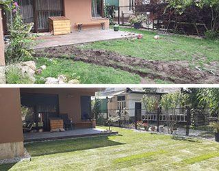Kutyabaráttá alakított kert Újpesten