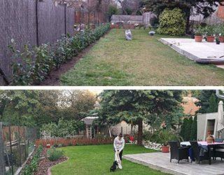 Gyerek és kutyabarát városi kert