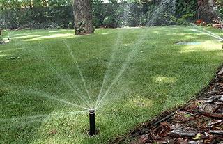 Egy kerti öntözőrendszer gondoskodik Ön helyett kertje szépségéről